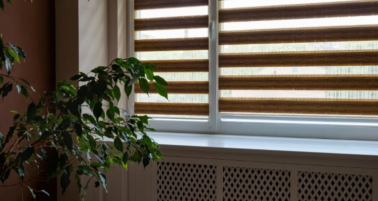 elegir cortinas para oficina